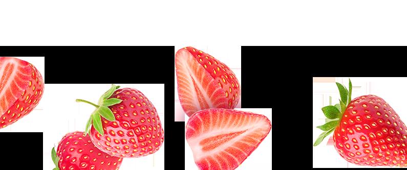 Mad Magic Strawberry Kombucha Ingredients