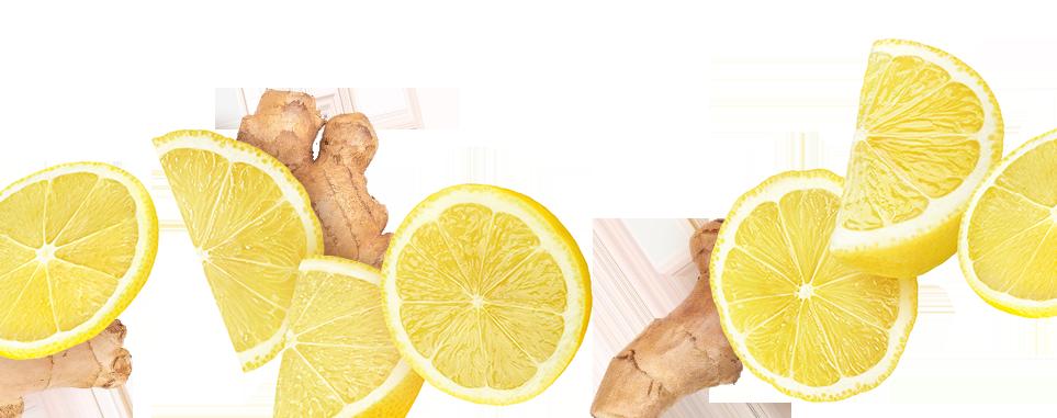 Mad Magic Ginger Lemon Kombucha Ingredients